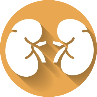 National Kidney Foundation India logo