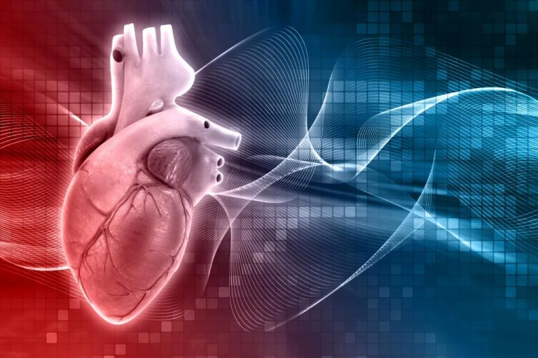 Anatomy and Function of the Heart's Electrical System