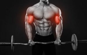 Benefits of Standing Barbell Curl