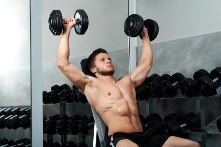 Muscles Worked by the Incline Bicep Curl