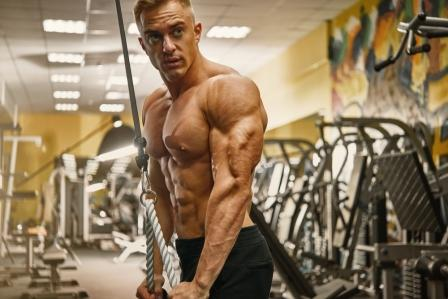 Muscles Worked by the Tricep Pushdowns