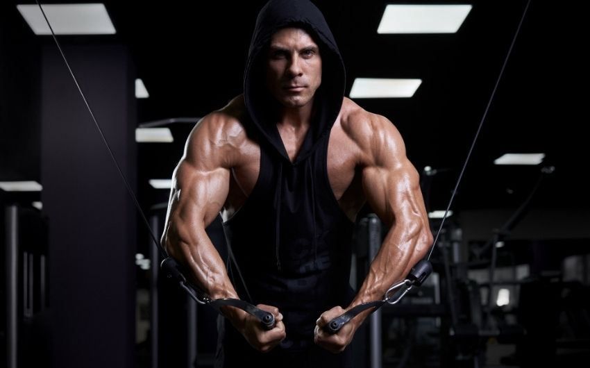 6 Ways You Can Benefit From A Mass Gainer
