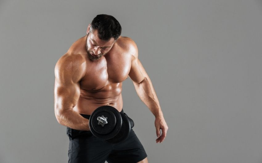 Muscle Memory For Bodybuilding