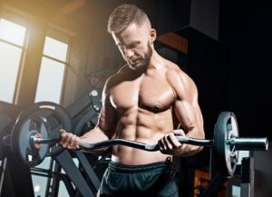 Effects on Muscle Growth