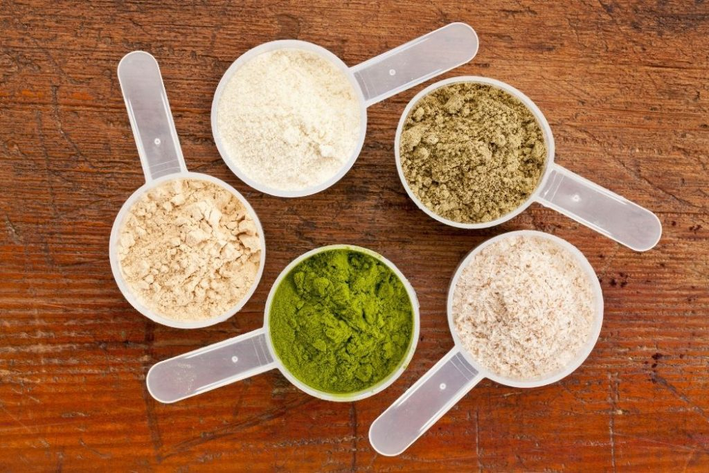 What Are Different Types of Protein?