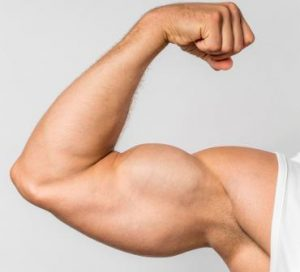What Is The Appropriate Age To Build Muscle